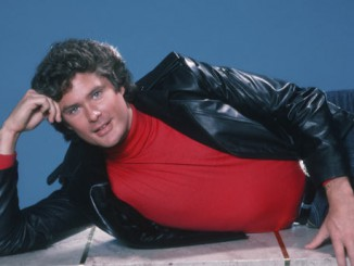 David Hasselhoff poses for some very funny photos. From Night Rider to Baywatch, the Hoff really makes an impression. can you handle this much Hoff?