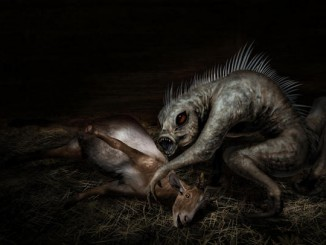 These mysterious creatures are rumored to exist although it has yet to be proven. We take a look at some seriously scary creatures that may actually exist.