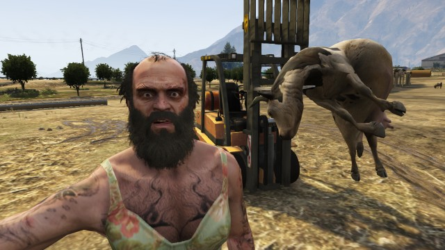 Trevor taking a selfie with a cow on a forklift on GTA V.
