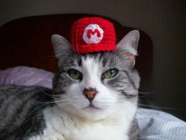 A cat wearing a Mario hat, lying on a bed.