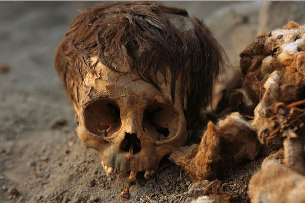 a human skull with hair found by customs officials at Miami International Airport - 10 Strangest Things Found By Airport Security