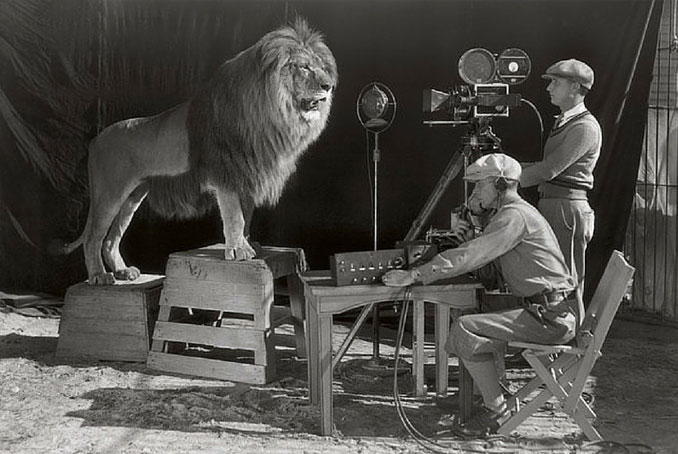 A photo of the MGM Lion - 10 Rare Photos From History