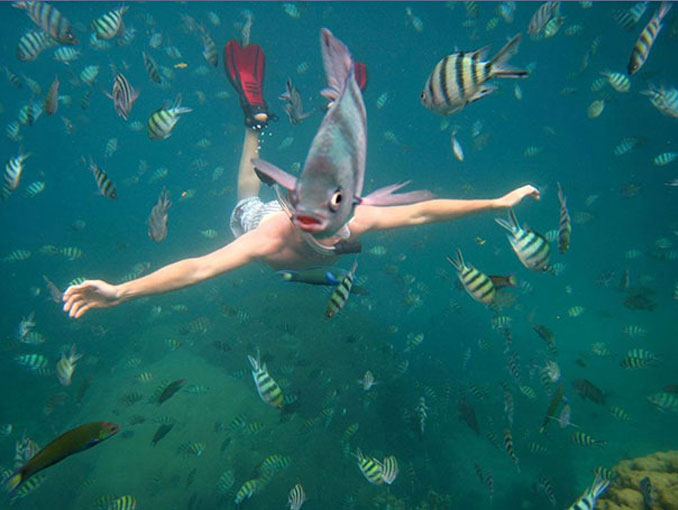 A photo of a man with a fish face - 10 Animal Photos Taken At Just The Right Time