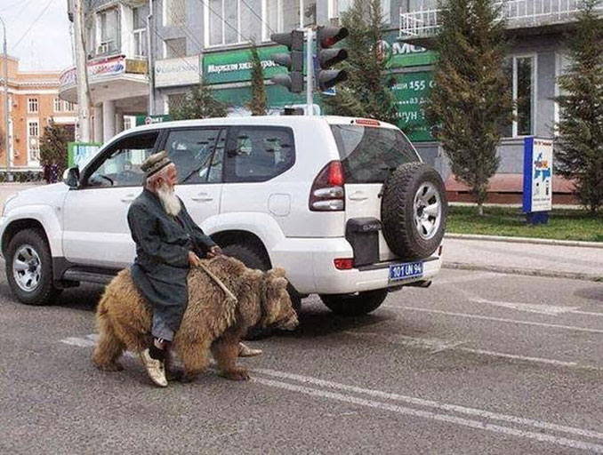 A man riding a bear - 20 WTF Photos You Just Have To See
