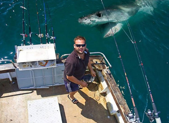 A man on a boat posing for a photo while a shark appears in the water - 10 Most Chilling Photobombs Ever Caught On Camera