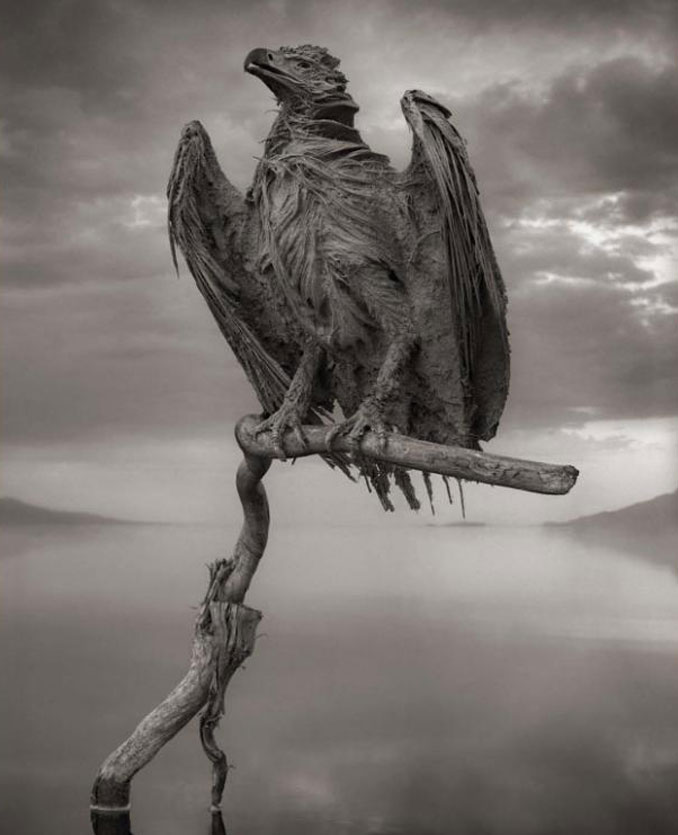 Lake Natron Frozen Fish Eagle - 10 Creepiest Statues Ever Created