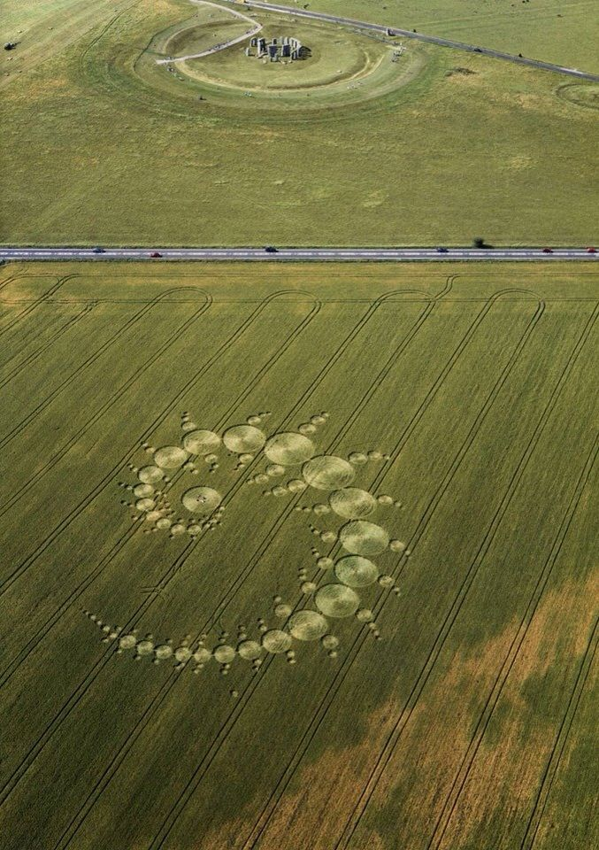 Baffling crop circles have authorities stunned.