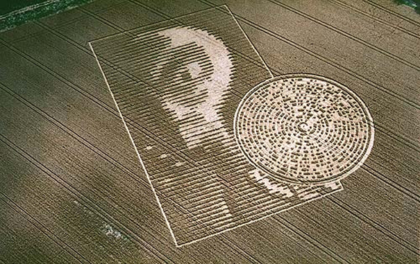 These crop circles have authorities baffled!