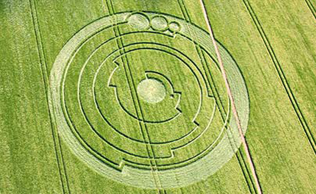 These crop circles have authorities baffled.