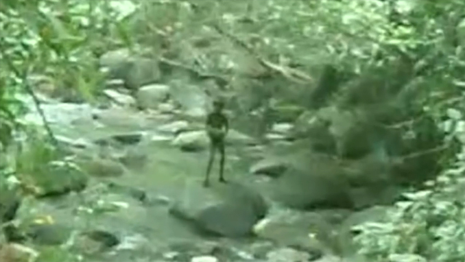 Alien standing on a rock in a river in the forest - 10 Strangest Things Ever Found in the Woods