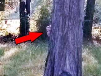 Creepy Cemetery Photos Show Paranormal Activity