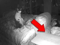 Scary Ghosts Caught on Camera