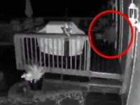 These Scary Clips May Show Paranormal Activity